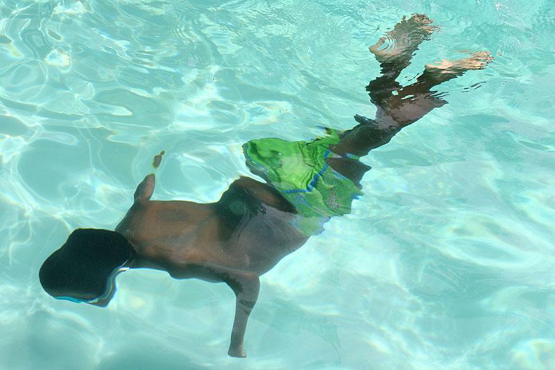 2009_0616_1277_Swimming